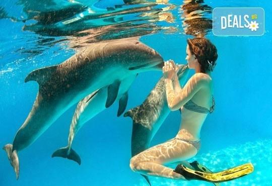 Посетете Доминиканска република - януари, февруари, май, юни! 7 нощувки, All Inclusive в Natura Park 5*, самолетен билет - Снимка 4