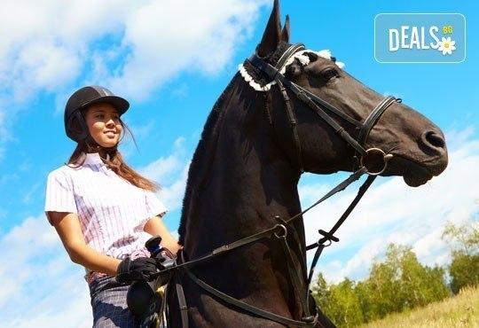 За любителите на конете! 30-минутна конна езда с водач или урок по конна езда с инструктор от конна база Драгалевци! - Снимка 3