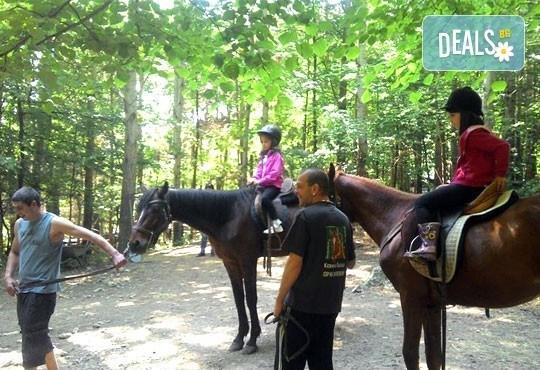 За любителите на конете! 30-минутна конна езда с водач или урок по конна езда с инструктор от конна база Драгалевци! - Снимка 4