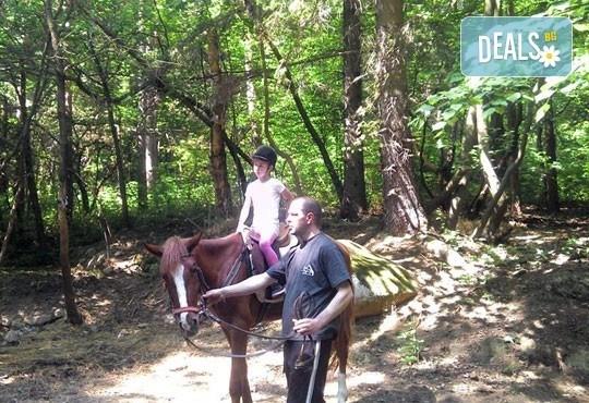 За любителите на конете! 30-минутна конна езда с водач или урок по конна езда с инструктор от конна база Драгалевци! - Снимка 5