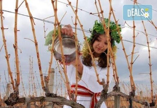 Празник на Керацудата в Пирин! Еднодневна екскурзия до село Илинденци с екскурзовод и транспорт от Солео 8! - Снимка 3