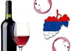 По пътя на виното на Трифон Зарезан с еднодневна екскурзия до Димитровград, Ниш и Княжевац от агенция По света и у нас! - Снимка