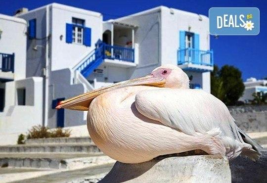 Почивка на о. Миконос, Гърция през май - слънце, море и плаж! 4 нощувки със закуски в хотел 3*, транспорт и водач! - Снимка 2