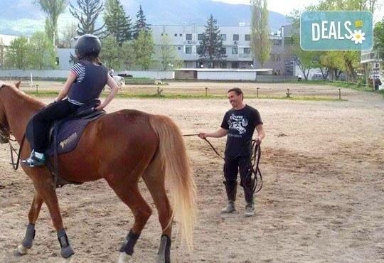 45-минутен урок по конна езда за начинаещи или за напреднали на манеж от Езда София в конна база Хан Аспарух! - Снимка 3
