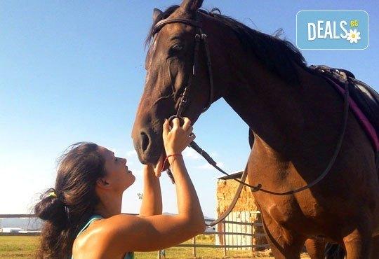 45-минутен урок по конна езда за начинаещи или за напреднали на манеж от Езда София в конна база Хан Аспарух! - Снимка 2