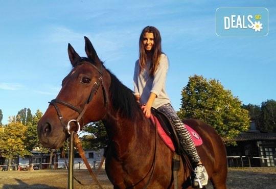 45-минутен урок по конна езда за начинаещи или за напреднали на манеж от Езда София в конна база Хан Аспарух! - Снимка 4