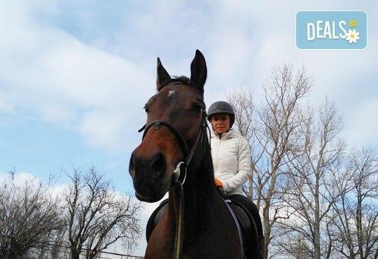 45-минутен урок по конна езда за начинаещи или за напреднали на манеж от Езда София в конна база Хан Аспарух! - Снимка 9