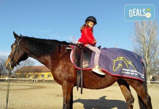 45-минутен урок по конна езда за начинаещи или за напреднали на манеж от Езда София в конна база Хан Аспарух! - Снимка 10