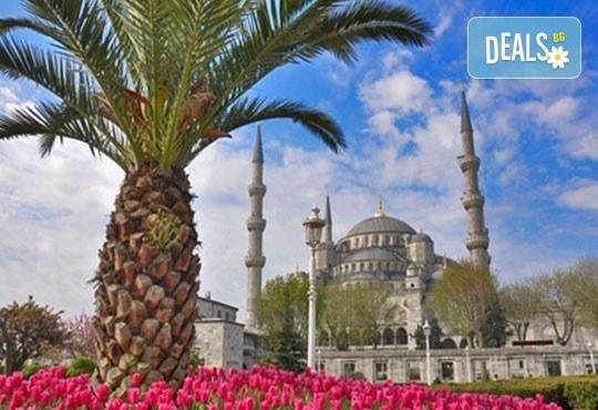 Фестивал на лалето в Истанбул – град със сто лица! 3*, 1 нощувка със закуска, транспорт от Пловдив с Дрийм Тур! - Снимка 1