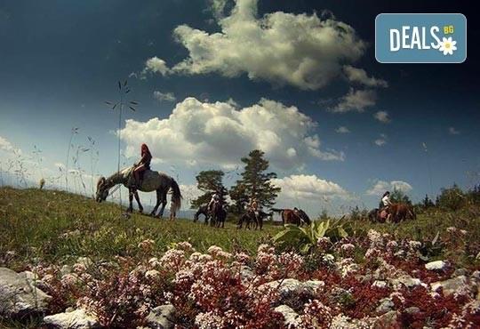 ДВА часа коннен преход - конна езда/ разходка с кон за начинаещи с инструктор в полите на Родопите от Конна база Стела - Снимка 3