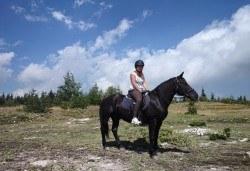 ДВА часа коннен преход - конна езда/ разходка с кон за начинаещи с инструктор в полите на Родопите от Конна база Стела - Снимка