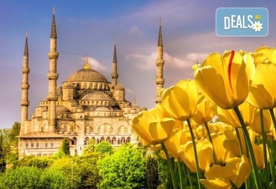 Екскурзия за Фестивала на лалето в Истанбул през април! 2 нощувки със закуски, транспорт, посещение на парка Емирган, Виаленд и Мол Виаленд! - Снимка 1