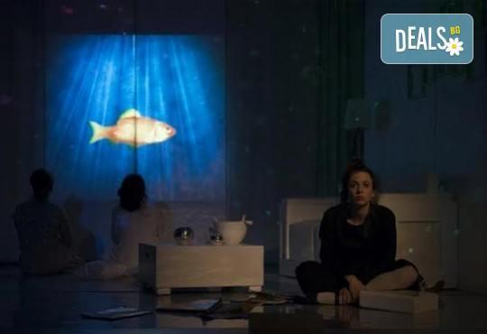 В света на театъра на 1-ви март! Гледайте Чиста къща, постановка на Владимир Люцканов в МГТ Зад канала - Снимка 3