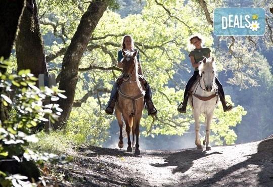 Обичате ли конете? 60-минутна конна езда с водач или 60-минутен урок по конна езда с инструктор от конна база Драгалевци! - Снимка 1