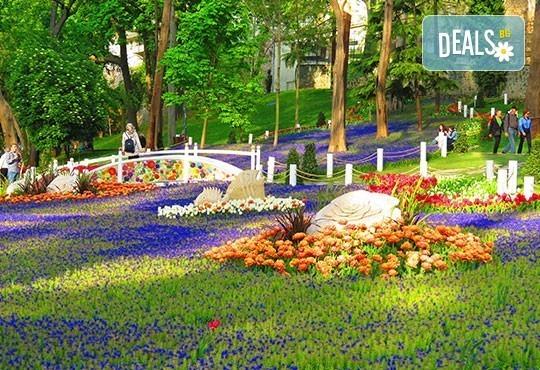 Фестивал на лалето в Истанбул с възможност за разглеждане на парк Емирган: 2 нощувки със закуски, транспорт и водач от Глобул Турс! - Снимка 5