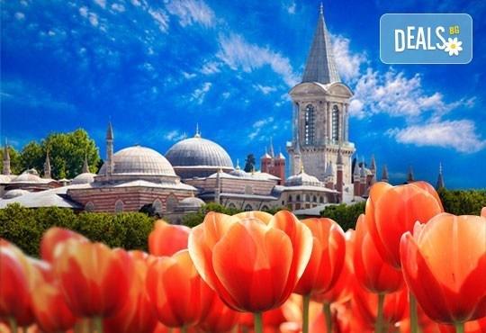 Фестивал на лалето в Истанбул с възможност за разглеждане на парк Емирган: 2 нощувки със закуски, транспорт и водач от Глобул Турс! - Снимка 1
