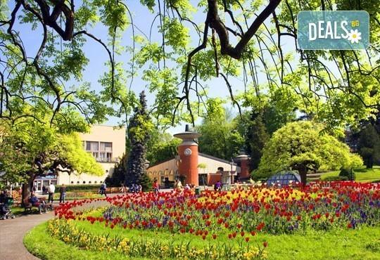 Майски или Септемврийски празници във Върнячка баня, Сърбия! 2 нощувки, 2 закуски, 1 вечеря в СПА хотел 3* и транспорт! - Снимка 1
