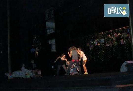 Два билета на цената на един за Любопитното слонче на 11.04. от 19ч, камерна сцена, театър Сълза и Смях - Снимка 3