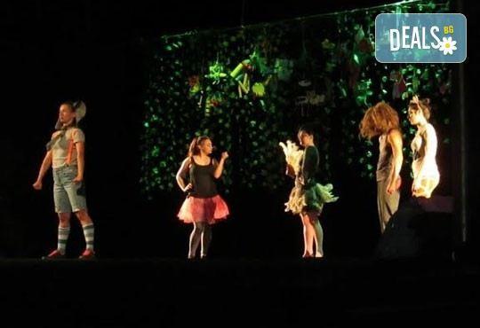 Два билета на цената на един за Любопитното слонче на 11.04. от 19ч, камерна сцена, театър Сълза и Смях - Снимка 4