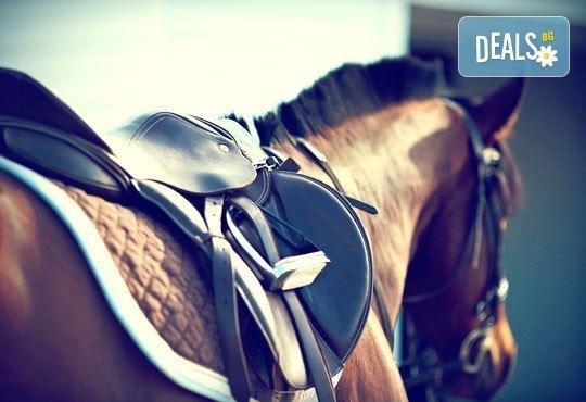 Усетете свободата! 30-минутно обучение с инструктор по конна езда от Конна база Ласкар, до с.Чепинци! - Снимка 1