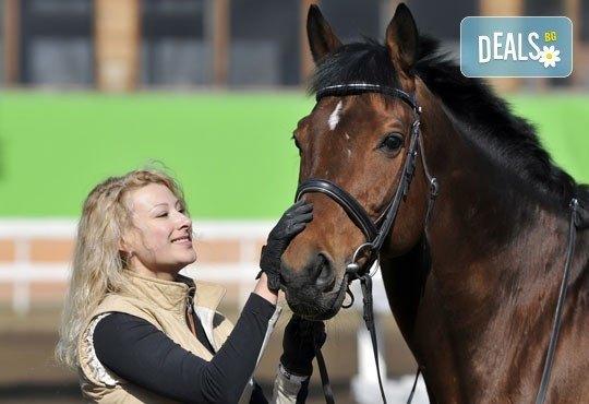 Усетете свободата! 30-минутно обучение с инструктор по конна езда от Конна база Ласкар, до с.Чепинци! - Снимка 2