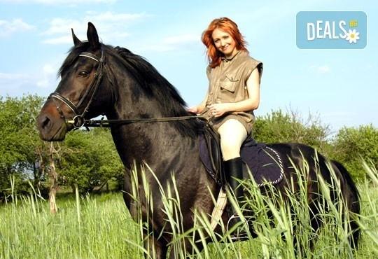 Обичате ли конете? 4 дни обучение по конна езда, общо 210 минути и преход по избор от конна база София – Юг, Драгалевци! - Снимка 1