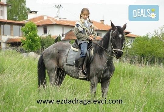 Подарете си различно преживяване с 45 минути конна езда с водач или урок с инструктор от конна база София – Юг, Драгалевци - Снимка 2