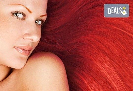 Максимален цвят и блясък! Боядисване на коса с крем боя Utopik на Hipertin от Дерматокозметични центрове Енигма! - Снимка 1