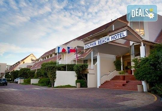 Почивка през май в Гърция! Почивка в Dolphin Beach Hotel 3*, Халкидики - 6 дни, 5 нощувки със закуски и вечери, транспорт, от Теско Груп! - Снимка 11