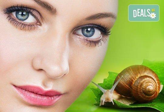 Почистване на лице и безиглена мезотерапия със серум от охлюви за регенерация и успокояване в салон Лаура стайл! - Снимка 1