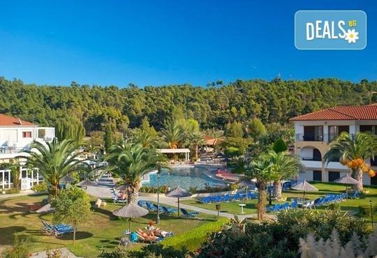 Ранни записвания за почивка в Chrousso Village Hotel 4*, Касандра, Гърция! 5 нощувки на база All Inclusive, ползване на басейн с чадъри и шезлонги! - Снимка 15
