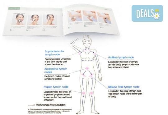 Събудете и раздвижете тялото си! Вземете механичен 4D масажор с четири въртящи се топчета от Gift Express! - Снимка 3
