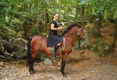 Обичате ли конете? Конна езда от Конна база Св. Иван Рилски на чист въздух във Владая