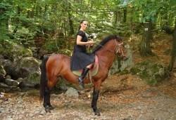 Обичате ли конете? Конна езда от Конна база Св. Иван Рилски на чист въздух във Владая - Снимка