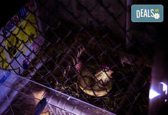 Събери отбор, резервирай стая! Бъди детектив в 60-минутното приключение от Emergency Escape с играта Пощенска станция - Снимка 8