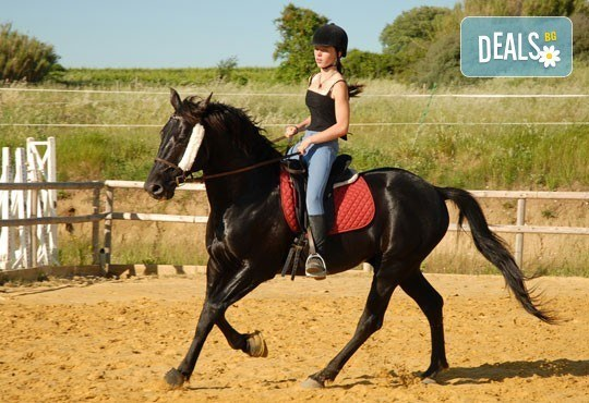 Подарете си различно преживяване с 45-минутен урок по конна езда с инструктор от конна база София – Юг, Драгалевци! - Снимка 1