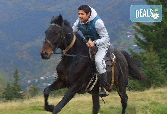 Конна езда и преход с коне в Родопите! 2 часа преход, видеозаснемане с екшън камера и безплатен басейн, от Ранчо Диви Родопи - Снимка 4