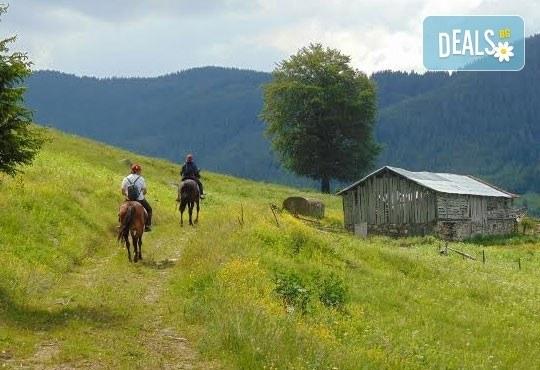 Конна езда и преход с коне в Родопите! 2 часа преход, видеозаснемане с екшън камера и безплатен басейн, от Ранчо Диви Родопи - Снимка 5