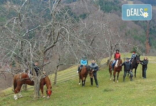 Конна езда и преход с коне в Родопите! 2 часа преход, видеозаснемане с екшън камера и безплатен басейн, от Ранчо Диви Родопи - Снимка 2