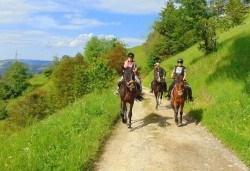 Конна езда и преход в Родопите- 2 часа, видеозаснемане с екшън камера и безплатен басейн