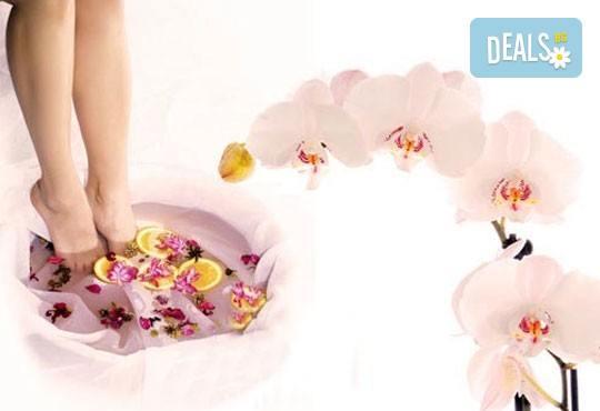 Маникюр или педикюр с гел лак Global Fashion, 2 декорации и бонус: масаж на ходилата в масажна ваничка в студио за красота Дани! - Снимка 1