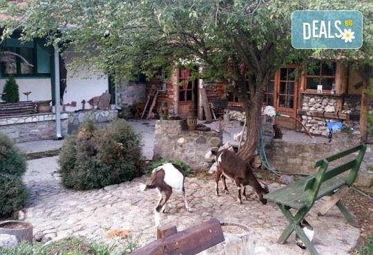 През септември в Етно село СРНА с Дениз Травел! 2 дни, 1 нощувка, закуска и вечеря с жива музика и неограничени напитки, транспорт! - Снимка 8