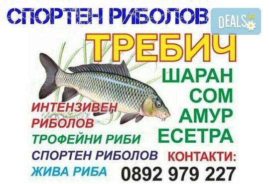 Хвърлете въдиците! Три посещения за един човек с по една въдица от Спортен риболов Требич! - Снимка 2