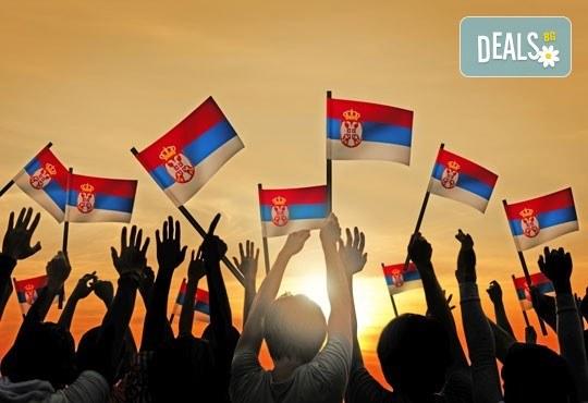 Посетете фестивала на сръбската скара, Рощилиада, в Лесковац, Сърбия - транспорт и екскурзовод от Далла Турс! - Снимка 3