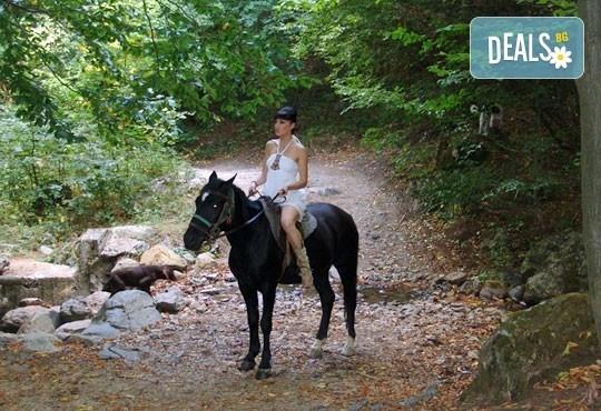 Обичате ли конете? Конна езда от Конна база Св. Иван Рилски на чист въздух във Владая - Снимка 3