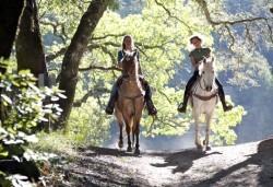 45-минутна конна езда с водач от конна база София Юг, кв. Драгалевци