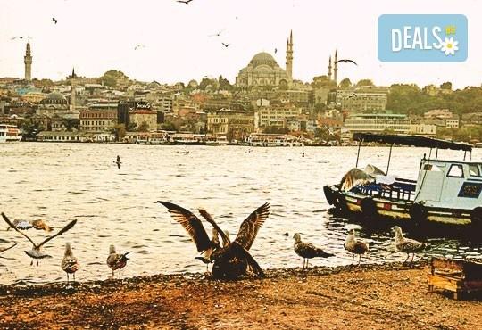 През ноември до Истанбул с включени транспорт, екскурзовод и пътни такси от агенция Поход! Нощен преход! - Снимка 1
