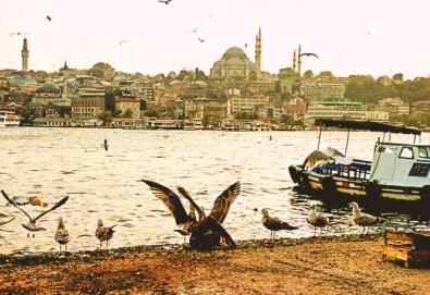 През ноември до Истанбул с включени транспорт, екскурзовод и пътни такси от агенция Поход! Нощен преход! - Снимка