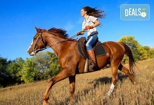 Подарете си различно преживяване с 45 минути конна езда с инструктор + Бонус - стрелба с лък от конна база София – Юг, Драгалевци! - Снимка 1