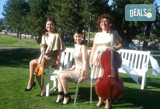 Цялостна организация на сватбено тържество, координатор на сватбения ден + водещ на изнесен ритуал от MUSIC for You! - Снимка 18